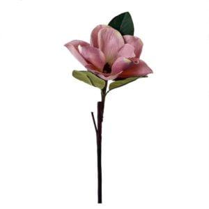 Konstväxt Blomma Rosa