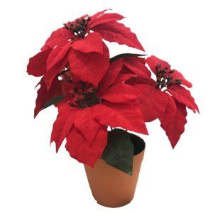 Konstväxt Julstjärna Röd