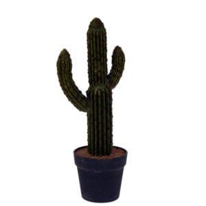 Konstväxt Kaktus Grön