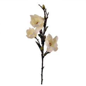Konstväxt Magnolia Vit