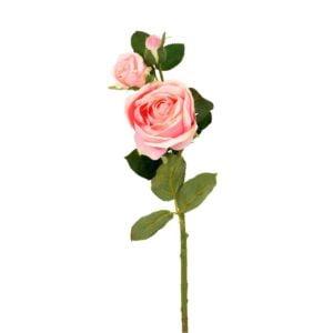 Konstväxt Ros Rosa