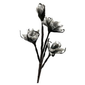 Konstväxt Växt blomma Grå