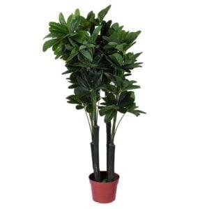 Konstväxt Växt blomma Grön