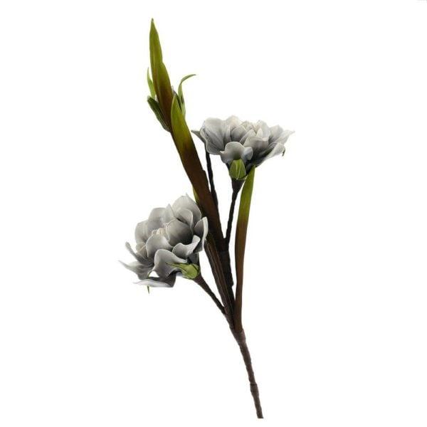 Konstväxt Växt blomma Vit