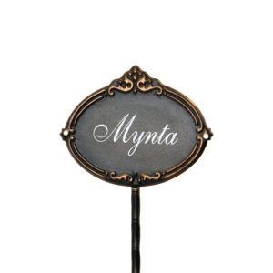 Kryddpinne Mynta