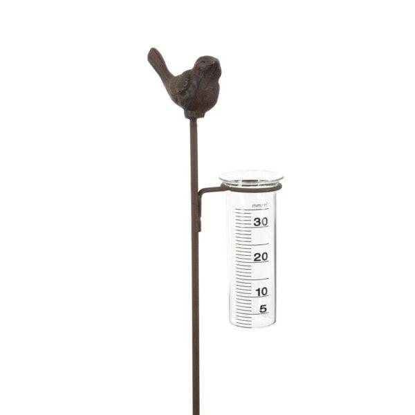 Regnmätare Luleå fågel Rost