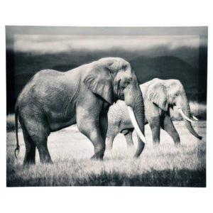 Tavla Elefanter Multi