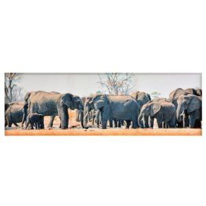 Tavla Elefanthjord Multi