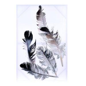 Tavla Fjädrar Multi