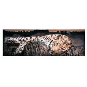 Tavla Leopard Multi
