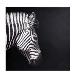 Tavla Zebra Svart/Vit